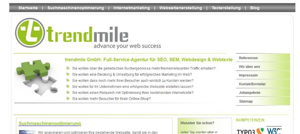 Screenshot trendmile.com