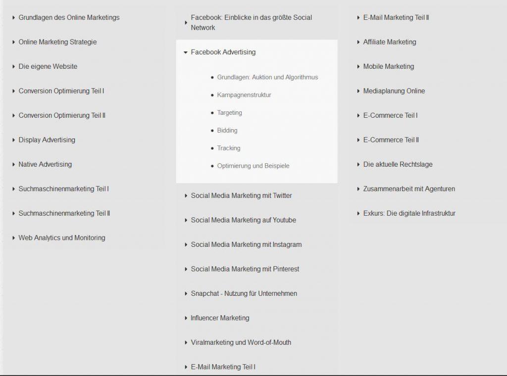 Screenshot des Lehrplans für die Ausbildung zum Online Marketing Manager der Social Media Akademie, Unterpunkt Facebook Advertising
